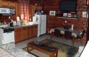 Living Kitchenette Area